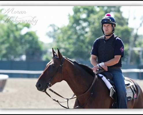 Tom Morley on horse