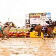 Regal Expectations wins at Pimlico Racecourse on May 25, 2017 in race #1.
