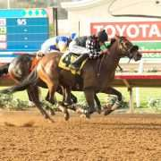 Spiced Perfection wins at Del Mar 07-19-17 in race #9