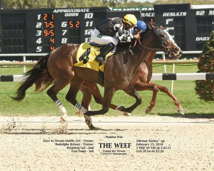 The Weef wins at Tampa Bay Downs on 02/15/18