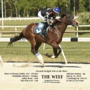 The Weef wins at Tampa Bay Downs on 03/16/18 in race #7