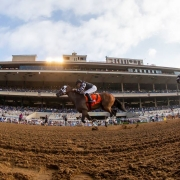 Spiced Perfection wins at Del Mar on 824-18 in race #6