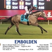 Embolden Wins at Colonial Downs on 08/08/19 in race 7