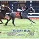 The Gray Blur Wins at Arlington Park on 08/10/19 in race 6