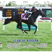 Star of Kodiak wins at Arlington Park on September 8, 2019 in race 5.