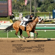 Busy Paynter wins at Santa Anita in race #2 on 01/10/20