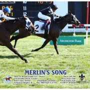 Merlin's Song wins at Arlington Park on 09/19/20