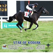Star of Kodiak wins at Arlington Park on 09/24/20 in race #9