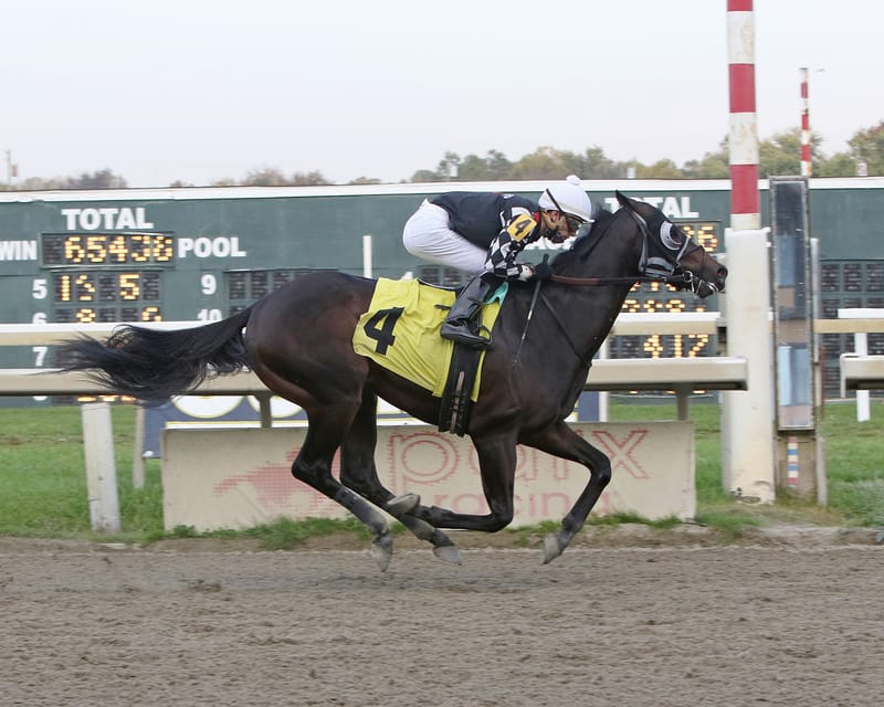 Quick Tempo wins impressively at PARX Racing on 10/20/20 in race 9