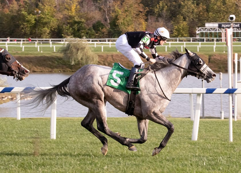 Embolden wins Punch Line Stakes at Laurel Park on 10/09/20 in race 8