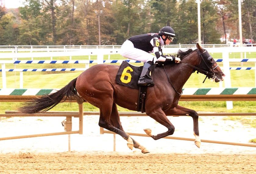 Starburst wins at Laurel Park in race #9 on 10/10/20
