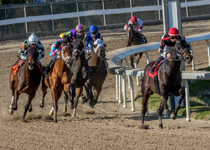Dare To Dream Stable's 2 year-old colt Quick Tempo won the Sugar Bowl Stakes at Fair Grounds Race Course 12/19/20